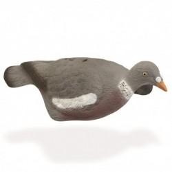 Pigeon Demi Coque