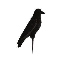 Grand Corbeau Floqué