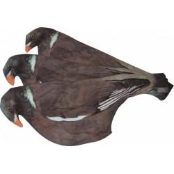 Chaussette à Pigeon